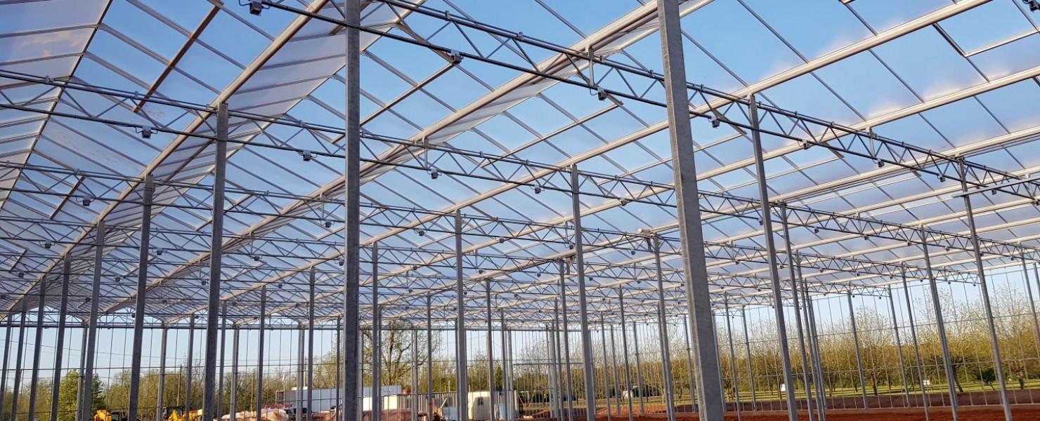 9,4 hectare glastuinbouw Pure Flavor