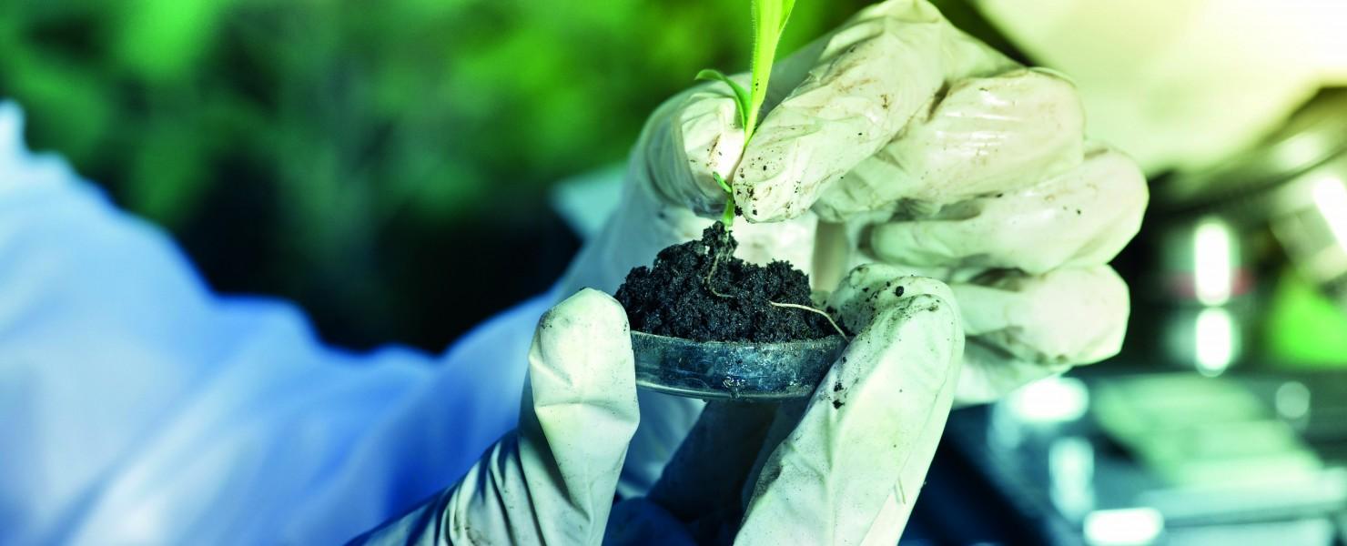 Topsector Tuinbouw & Uitgangsmaterialen heeft de hortisector prachtig in beeld gebracht